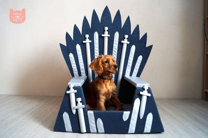 Hand Made Iron Throne Animal Beds In Celebration Of The New Game Of Thrones Season