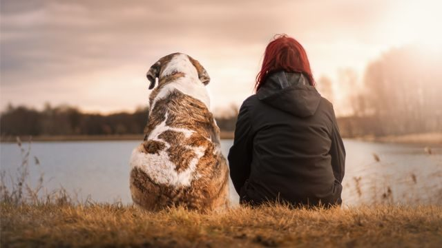 Losing A Pet Hurts More Than Most People Understand – Here's Why